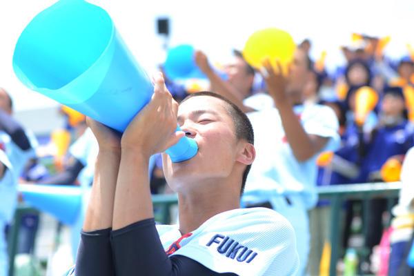 全国高校野球選手権福井大会